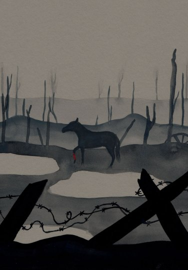 momoko-abe-war-horse-3