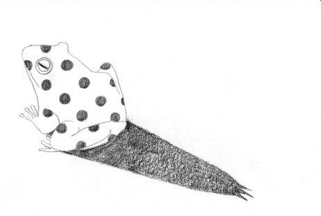momoko-abe_grimm_the-frog-prince